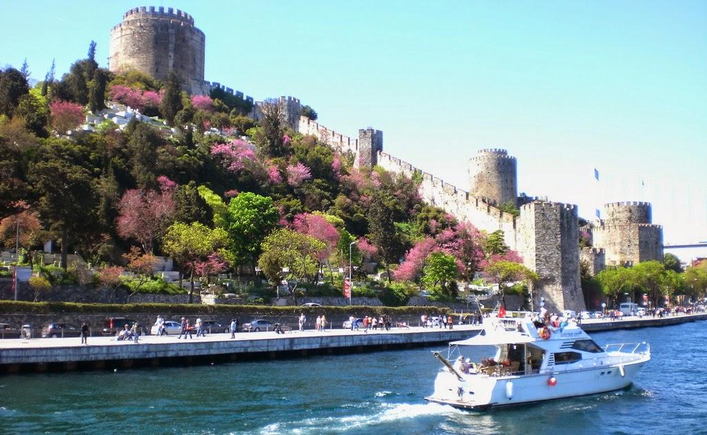 1 judas trees in blossom + rumeli fortress